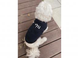 בגדים לכלבים – בגד לכלב עם שם בעברית