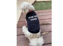 בגדים לכלבים – מתנה לכלב ולבעליו נוחר מוסמך